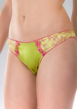 WP_Peeping_Tom_brief_front